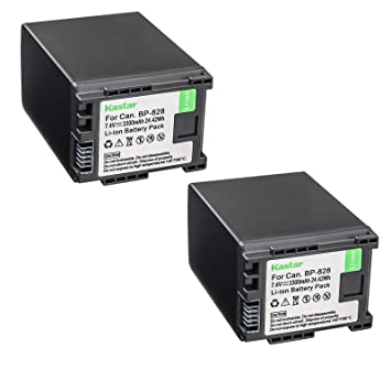 Amazon.com: Kastar LCD Dual Fast cargador de batería para ...