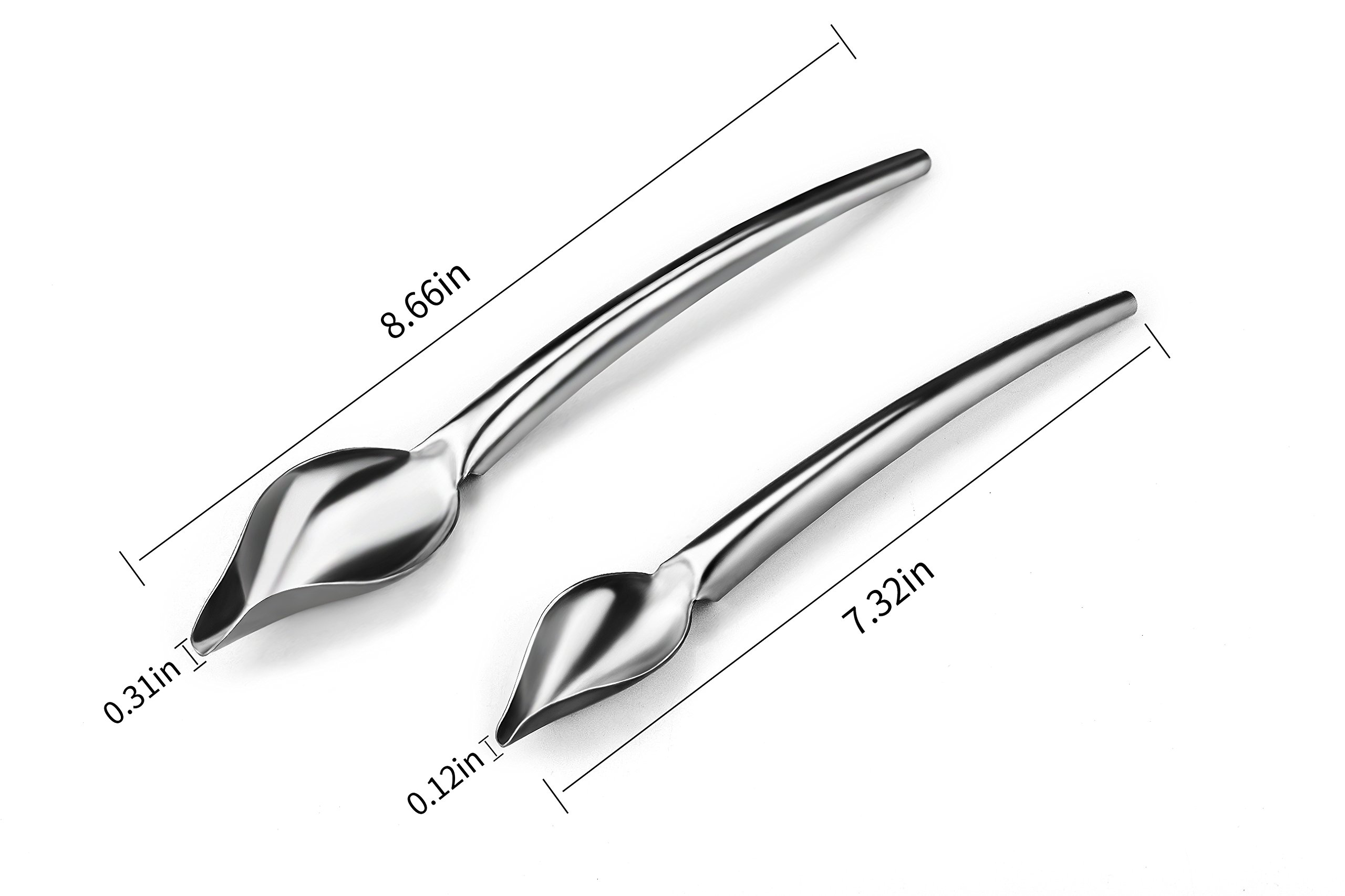 Dcrt Deco Spoon Multi-use Precision Chef Culinary Drawing Spoons for Decorating Plates, set of 2 by Dcrt (Image #2)