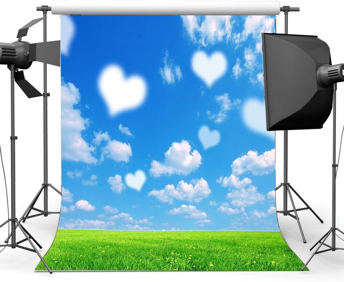 SUNNY Star 5/x 7ft//150/x 210/cm de San Valent/ín D/ía vinilo tel/ón photography azul cielo blanco nube verde hierba c/ésped boda semaless Ni/ñas amante retrato fondo Photo Studio Props ca958