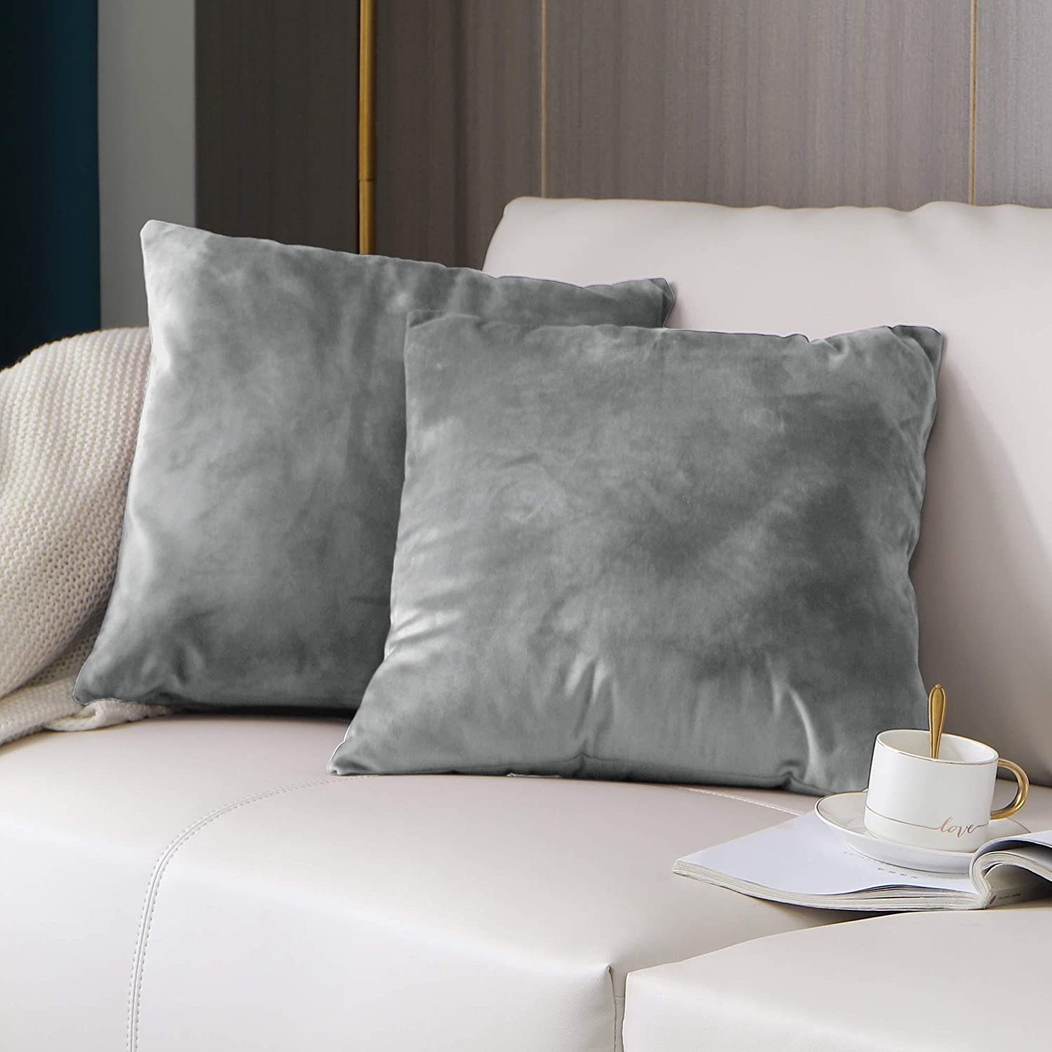 KOUFALL Silver Gray Throw Pillow Cover 18x18 Inch for Couch Set of 2 Pack Cushion Cover Home Decor Elegant Decorative Solid Soft Velvet Pillow Case for Sofa Bed and Chair 45x45 cm
