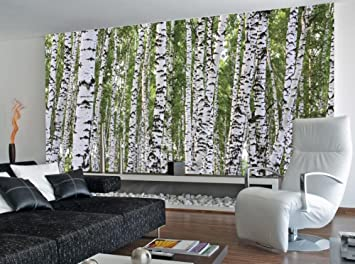 Beautiful (99x164) Forest Of Birch Trees Huge Wall Mural Part 13