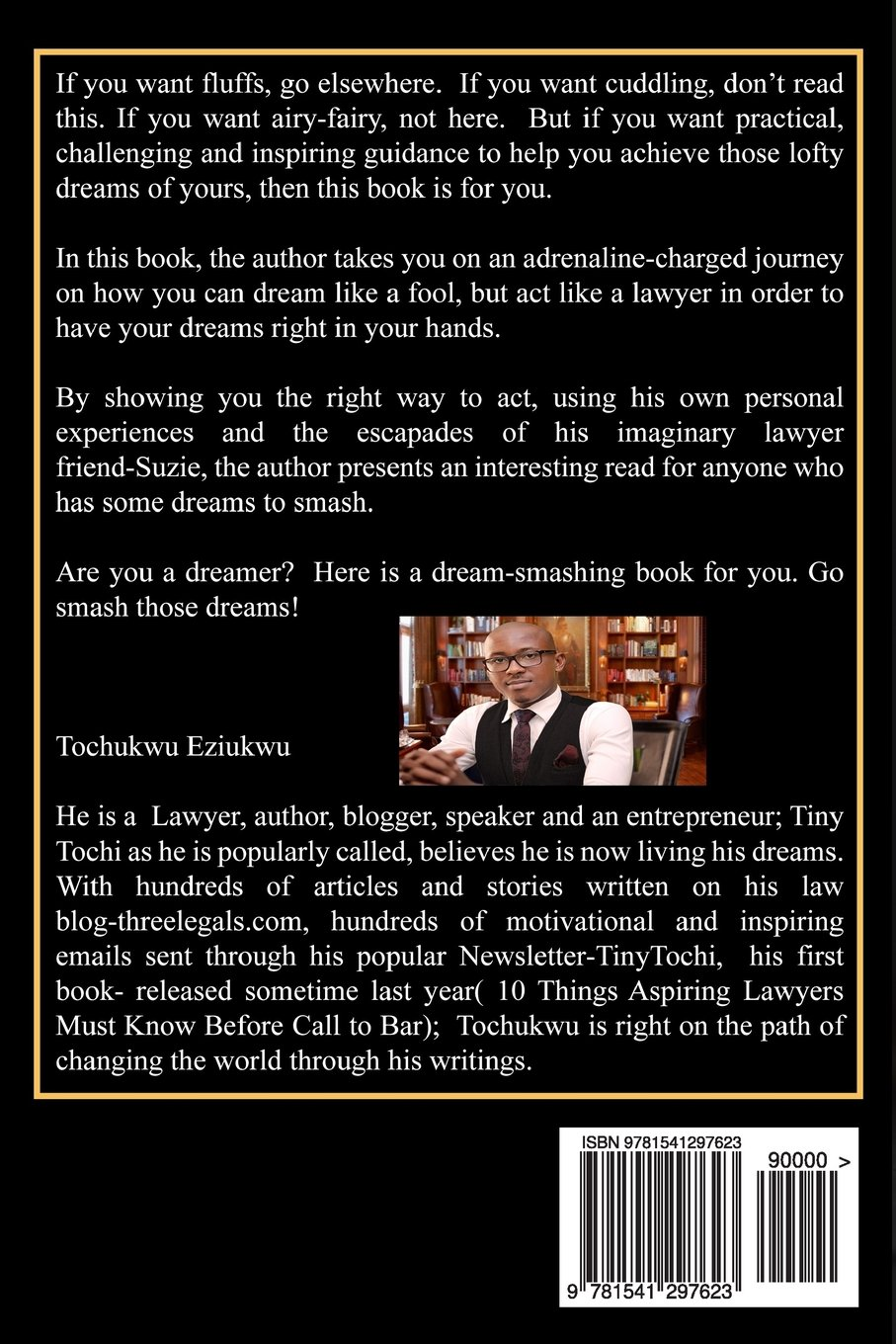 Dream Like A Fool, Act Like a Lawyer: A Lawyer's Approach to