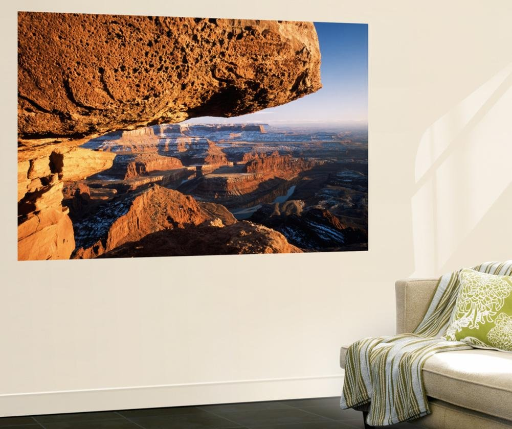 Sunrise View of Dead Horse Point State Park and Colorado River, Utah, USA Wall Mural by Scott T. Smith 48 x 72in by DANITA DELIMONT POD