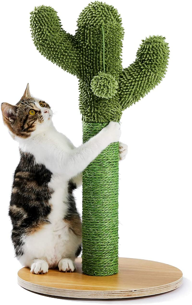 Made4Pets Cactus Cat Scratching Post with Natural Sisal Ropes, Cat Scratcher for Cats and Kittens
