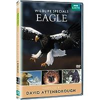 David Attenborough Wildlife Specials - Eagle