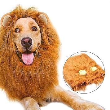 Peluca para perros, Golden Retriever Samoyedo León Cabeza Peluca de perro Perro grande León Sombrero