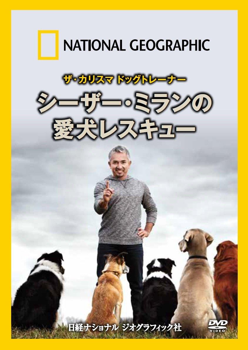 ナショナル ジオグラフィック ザ・カリスマ ドッグトレーナー シーザー・ミランの愛犬レスキュー [DVD] の商品写真