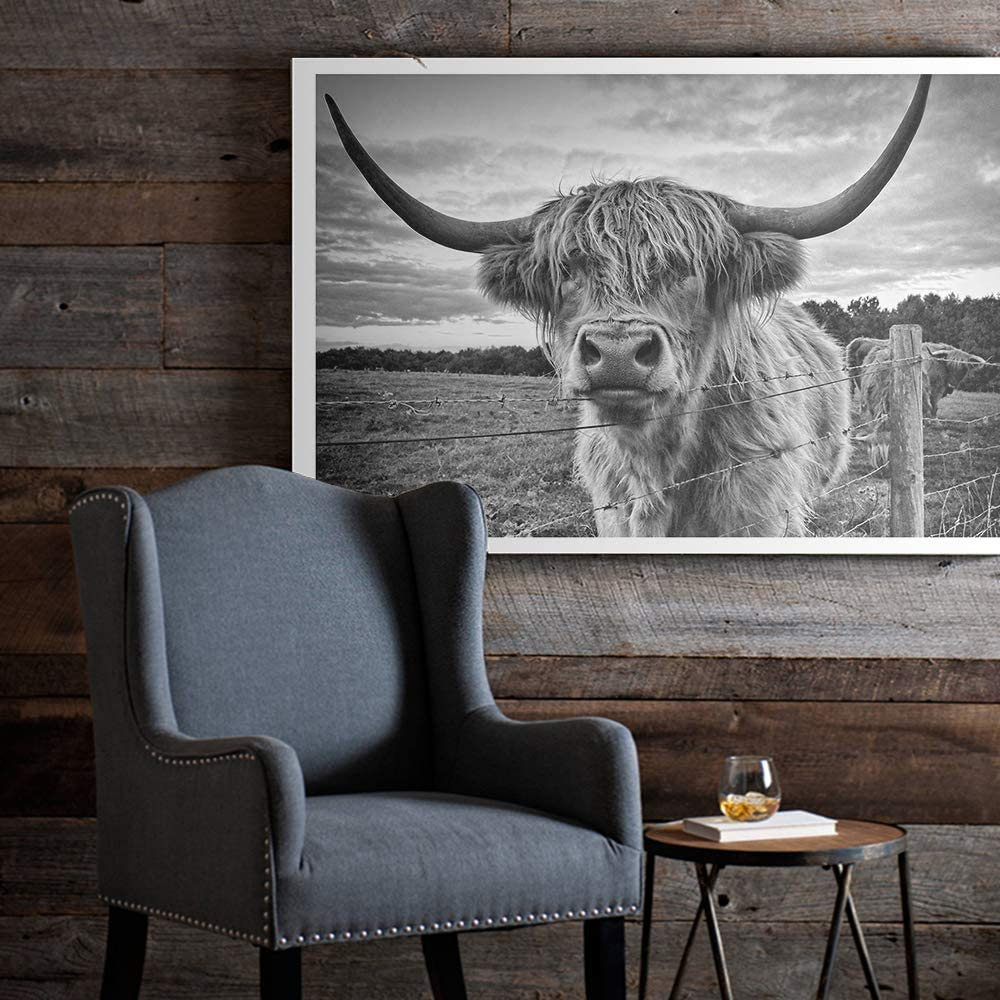 Scottish Highland Cow Art Print Poster Canvas Print Wall Art, Unframed, for Wall Decor Home Decor (Cow1, 16x24 Inch)
