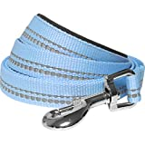 Blueberry Pet 3M Reflective Dog Leash in Pastel Colors Neoprene Padded Handle, 2 Colors, Matching Collar & Harness Available Separately
