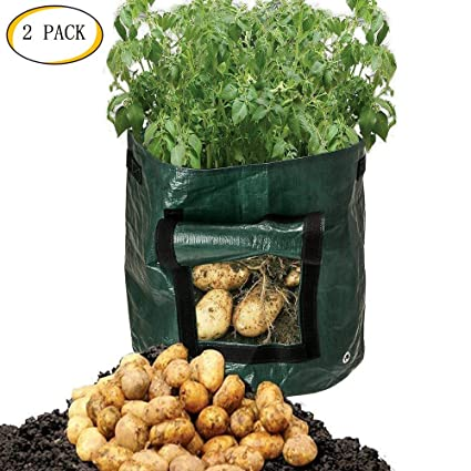 Ordinaire Mofvg Grow Bags, Raised Garden Bed Plant Containers Fabric Pots Planter Bag