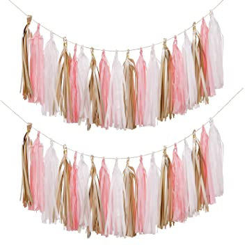 Ling S Moment 18 Pcs Diy Tassel Garland Set Of 2 Tissue Paper Tassel Fiesta Fringe Banner Pompom For Wedding Bachelorette Baby Shower