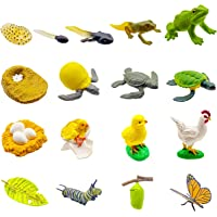 DQstar 13 PCS Life Cycle Figures of Frog,Chicken,Sea Turtle,Early Education Animal Figures,Biology Science Toys