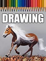 Time Lapse Drawing of a Running Horse