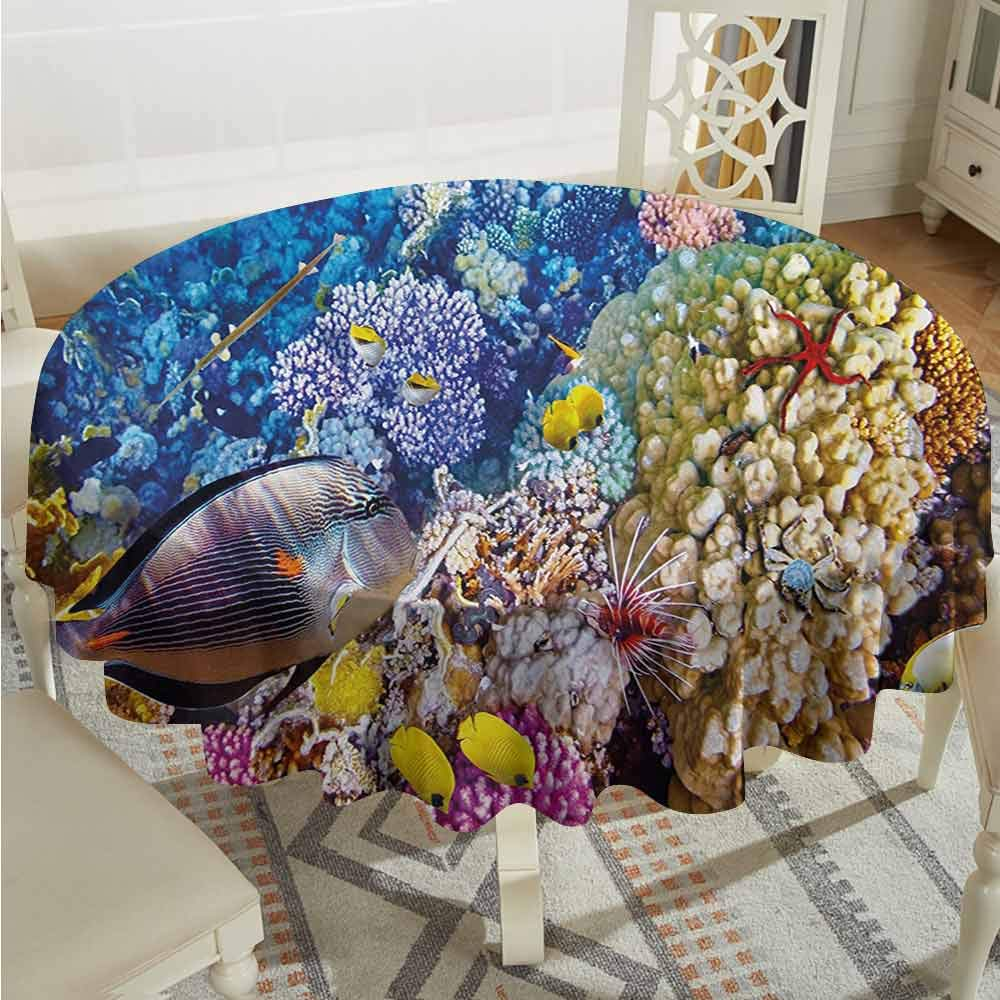 Overlays Round Tablecloth Fish Egyptian Red Sea Bottom View with Marine Creatures Top of Tribal Ocean Scuba Image Multicolor Tassel Tablecloth Diameter 54'' by Suchashome