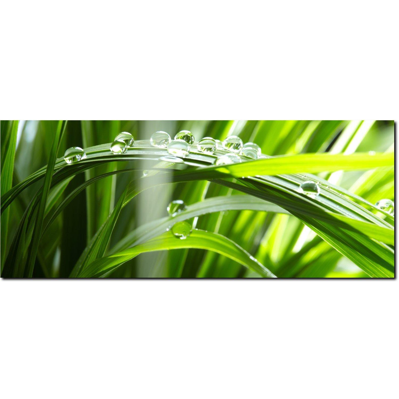 DekoGlas Glasbild 'Gras Tautropfen' Echtglas Bild Küche, Wandbild Flur Bilder Wohnzimmer Wanddeko, einteilig 125x50 cm