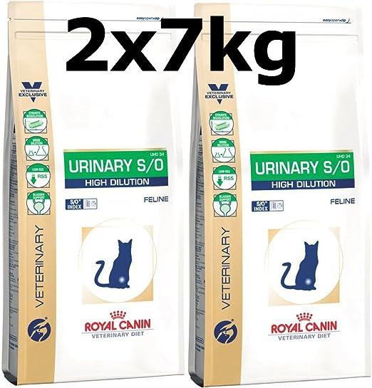 Royal CANIN urinary S/o High dilution para gatos: Amazon.es ...