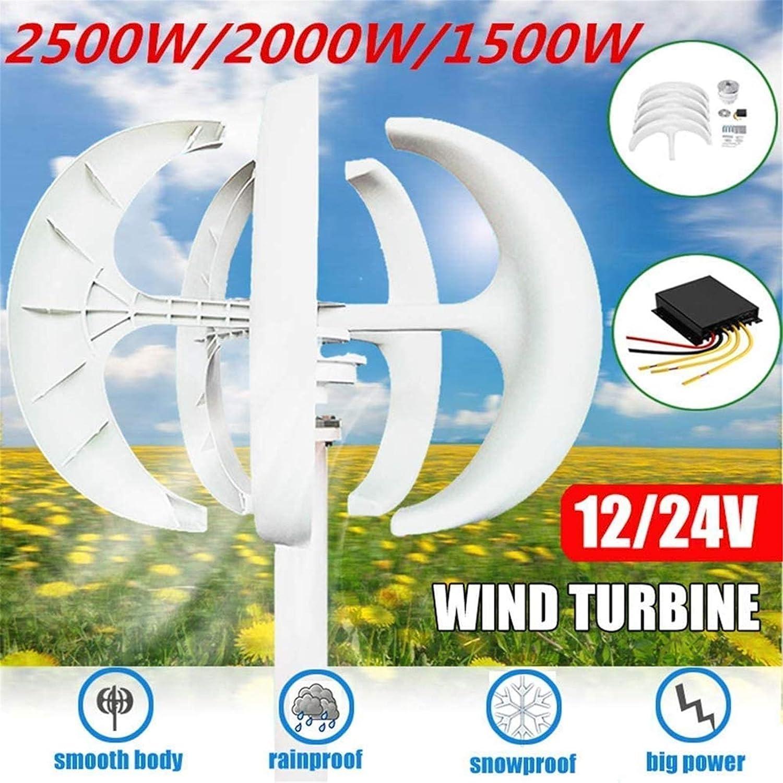 RDJM Turbina eólica Aerogenerador, 1500W / 2000W / 2500W Viento generador de turbinas + Controlador 12V / 24V 5 Cuchillas Linterna de Eje Vertical for los hogares residenciales Farola