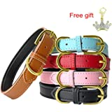PET ARTIST Classic Soft Padded Leather Dog Collar for Small & Medium Dogs Cats