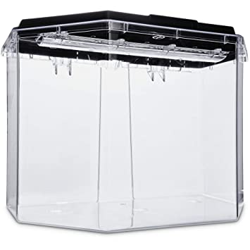 Amazon.com : Imagitarium Semi-Hexagonal Aquarium Kit, 6.7 GAL : Pet Supplies