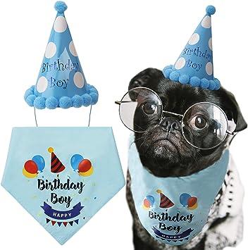 Amazon.com: LUTER - Bandana de cumpleaños para perro, diseño ...