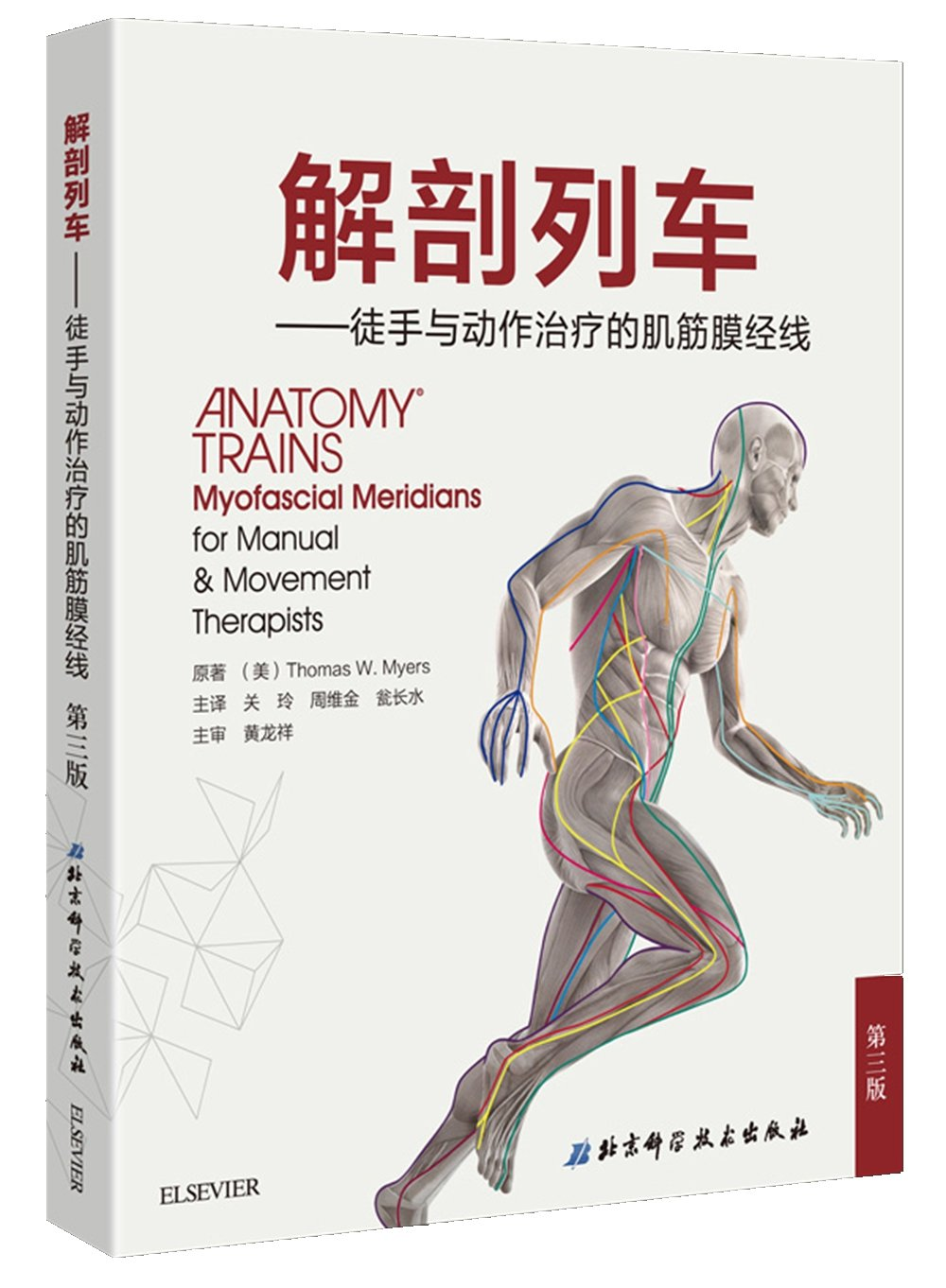Anatomy Trains - unarmed and myofascial meridian therapy movement ...
