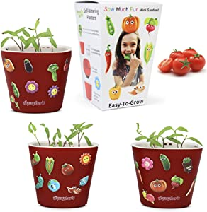 Window Garden Sow Much Fun Seed Starting, Vegetable Planting and Growing Kit for Kids, 3 Self Watering Planters, Soil, Seeds and Puffy Stickers. No Mess, Easy, Works Great! (Cherry Tomato)