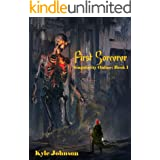 First Sorcerer: Singularity Online: Book 1