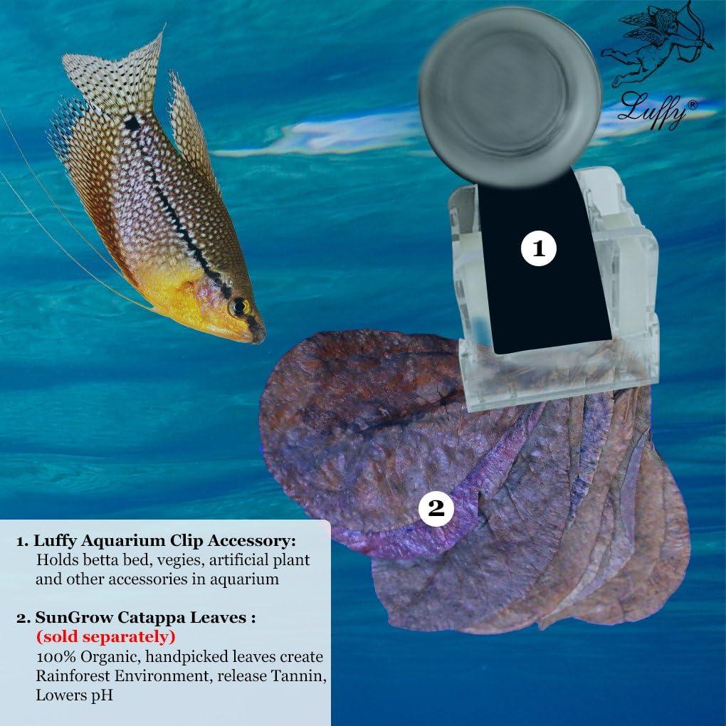 JONJUMP Fish Tank Strong Magnetic Seaweed Feeding Clip Laver Clip Vegetable Clip Aquarium Supplies