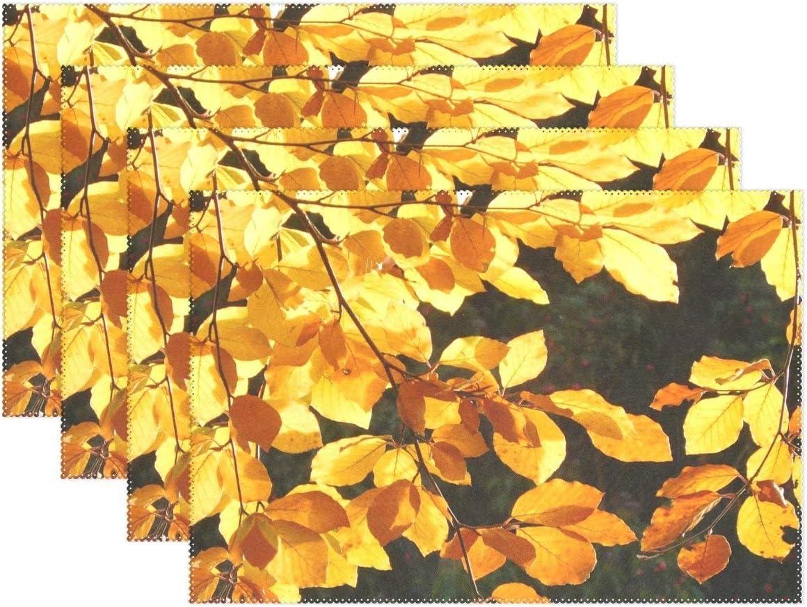 Promini - Manteles Individuales Resistentes al Calor, Hojas de Hojas, árbol Amarillo, otoño, Lavable, poliéster, Antideslizantes, Lavables, para Cocina, Comedor, Juego de 4