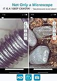 Digital Wireless Microscope USB WiFi 50X to 1000X