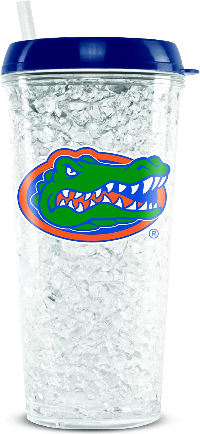 NCAA Florida Gators 16oz Crystal Freezer Tumbler with Lid and Straw
