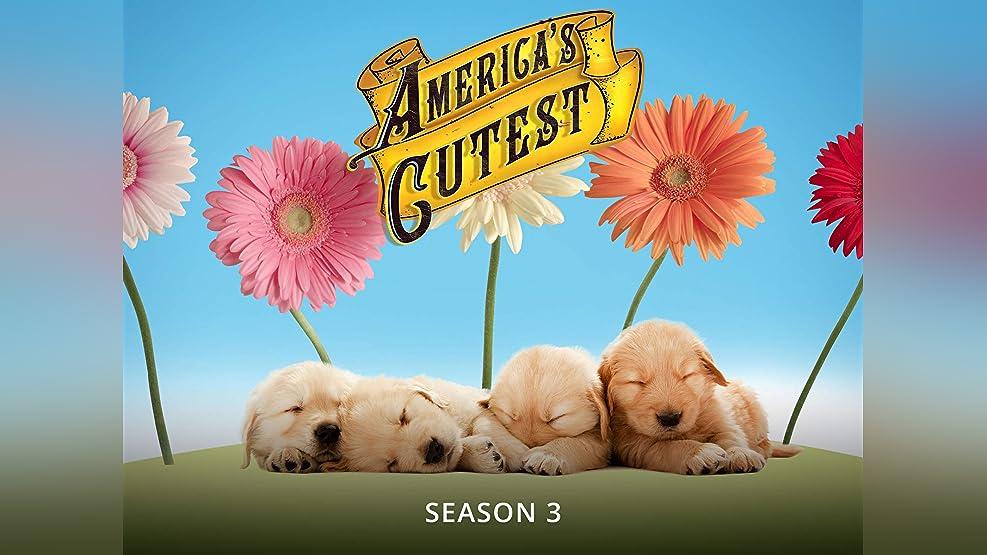 America's Cutest - Season 3