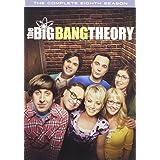 Big Bang Theory,The: S8 (DVD)