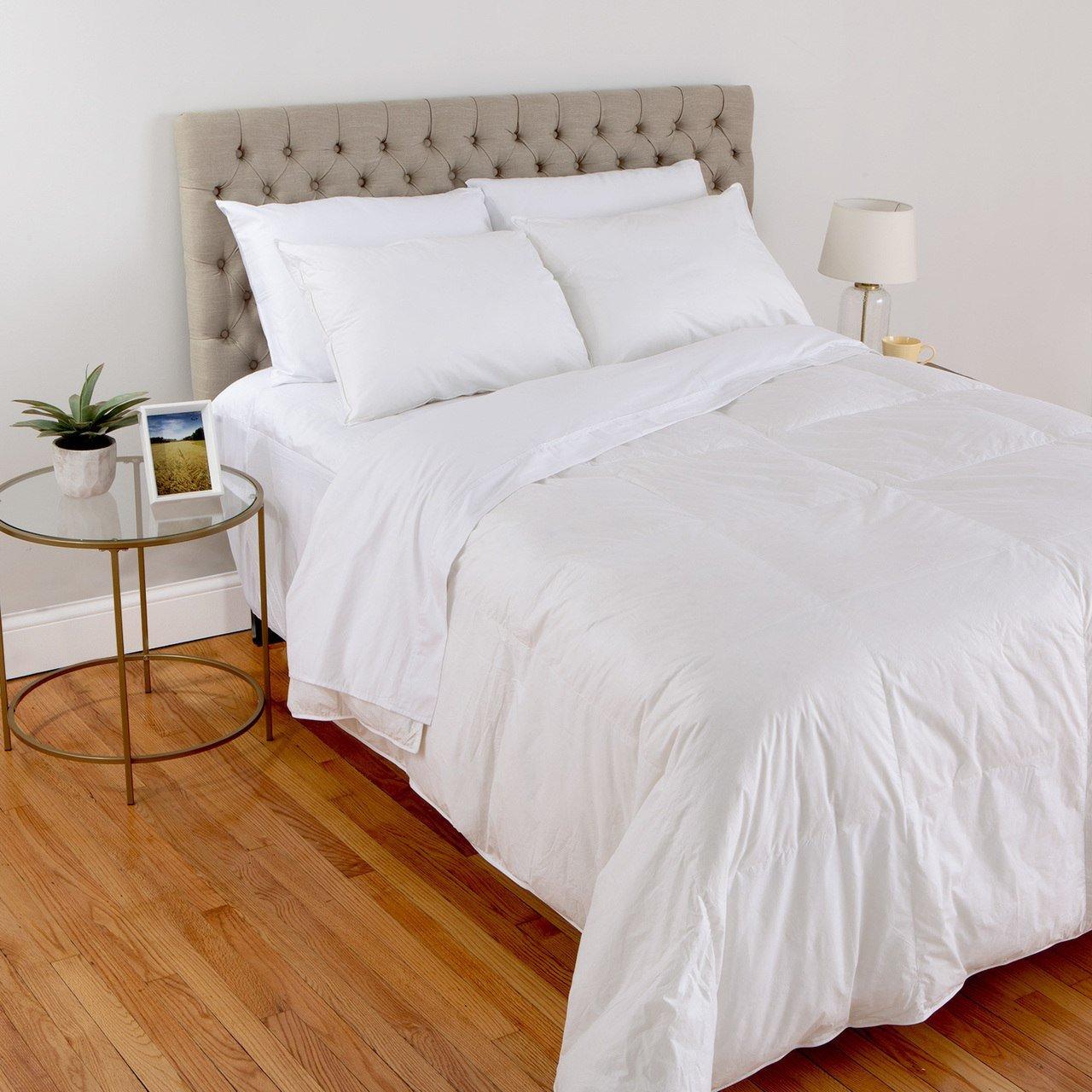 DOWNLITE Spa Luxe 700 Fill Power PurDown Lightweight Comforter (Twin XL)