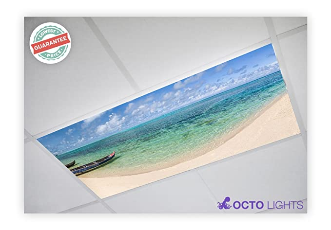 Amazon.com: Playa 005 2 x 4 cubierta luz fluorescente ...