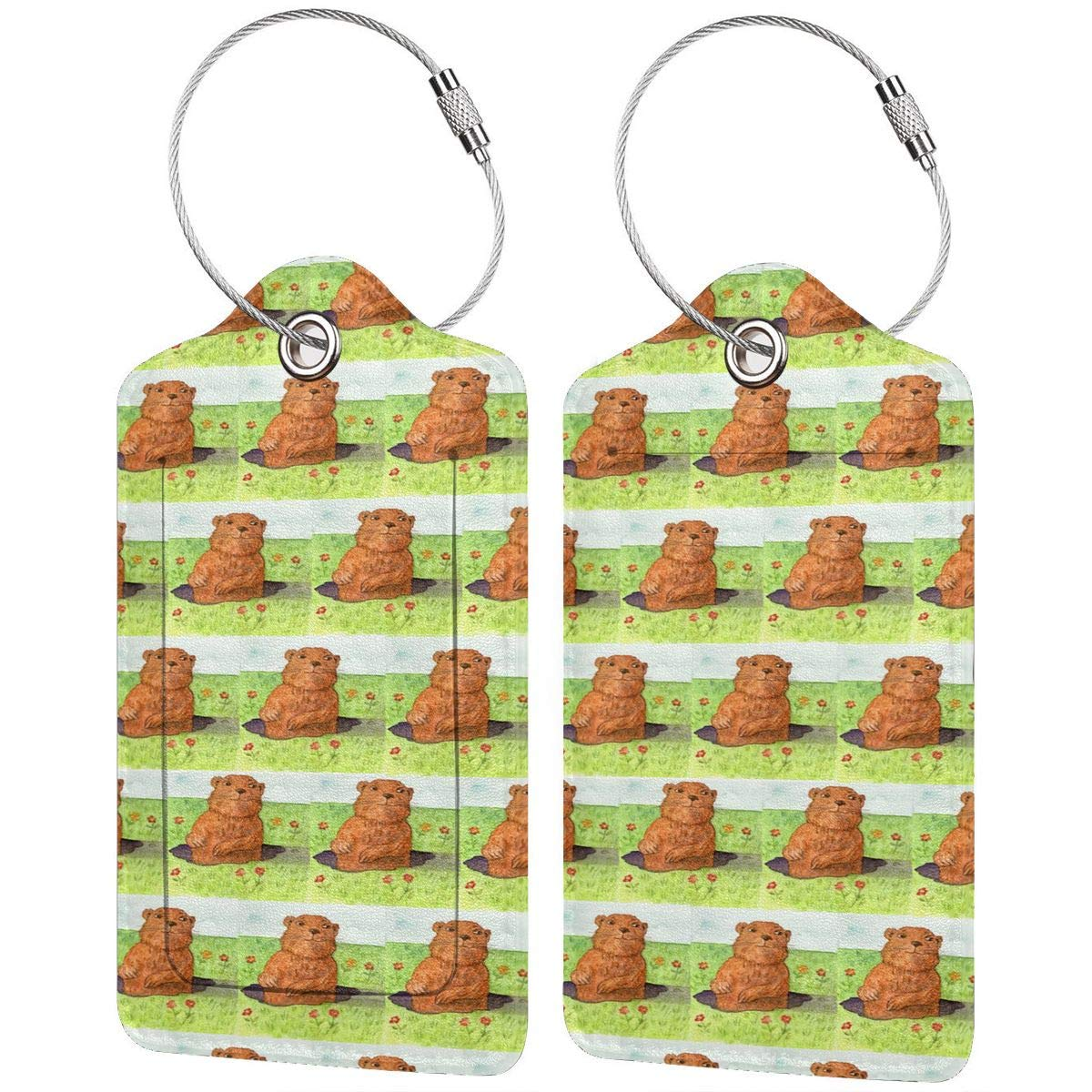 Groundhog Day Leather Luggage Tags Suitcase Tag Travel Bag Labels With Privacy Cover For Men Women 2 Pack 4 Pack