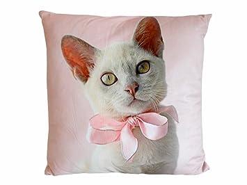 Diseño de gatos y funda de almohada de cojín almohada decorativa de gatitos y de la decoración de los cojines del sofá: Amazon.es: Hogar