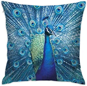 antoipyns Peacock Pillow Cover,Decorative Throw Pillow Opening Peacock Beautiful Animal Pillow CASESOUTDOOR Indoor Square Cushion Covers for Home Sofa Couch 18X18 INCH RED