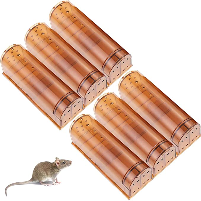 No Kill,Easy to Set and Safe Reusable for Indoor//Outdoor use 2 Pack for Small Rodent//Voles//Hamsters//Moles Catcher EAQ Humane Mouse Trap