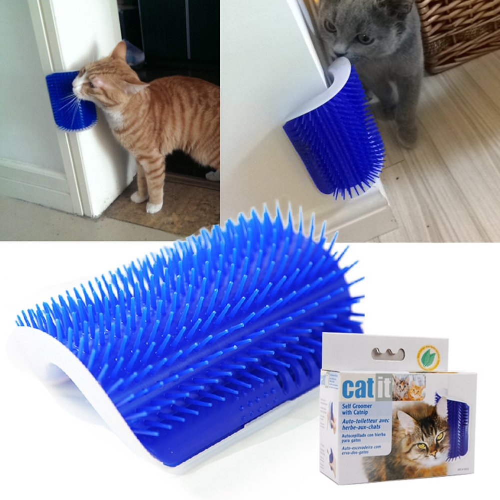 bluee BERTERI Pet Hair Massage Brush Cat Scratches Face Comb Self Groomer with Catnip bluee (Pack of 1)