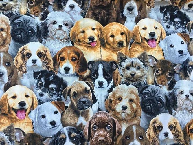 Amazoncom Dog Breeds Puppy Doggy Bowwow Puppies Mans Best Friend