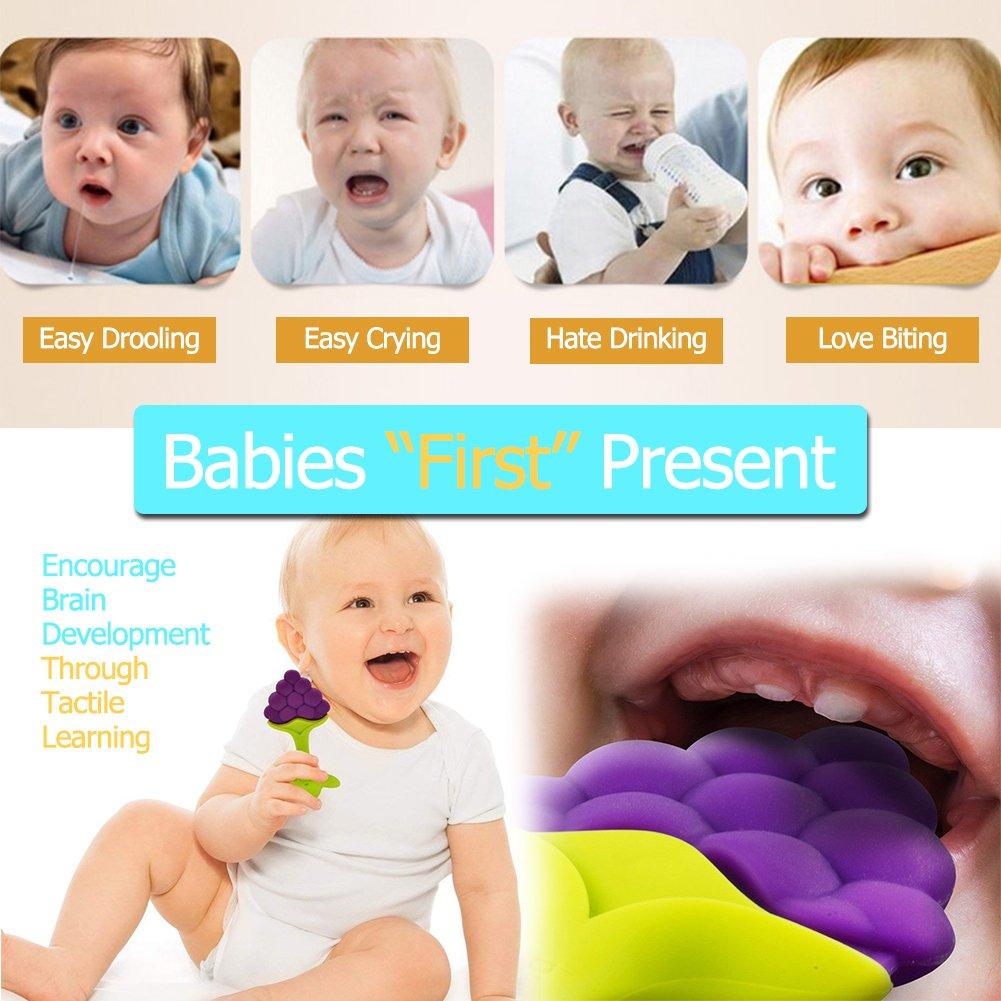 Amazon.com: L-HYDRONE - Juego de 4 juguetes de dentición ...