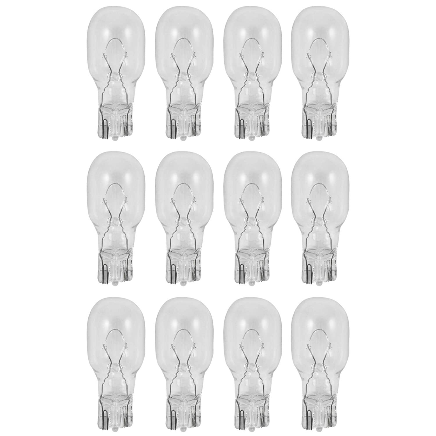 6V 5W Low Voltage T5 Wedge Base Bulb, Long Life, Pack of 12