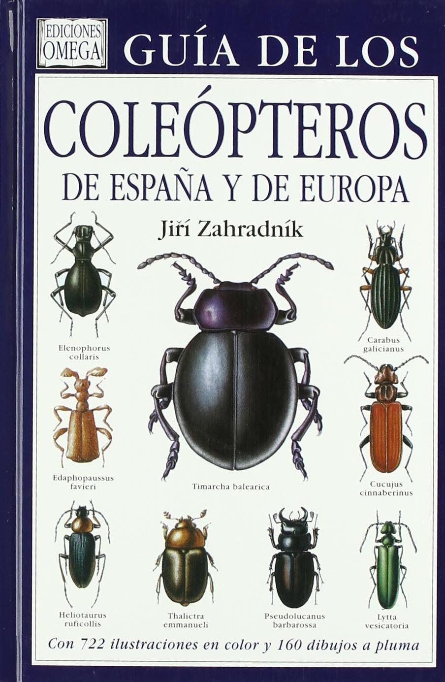 GUIA COLEOPTEROS DE ESPAÑA Y DE EUROPA GUIAS DEL NATURALISTA-INSECTOS Y ARACNIDOS: Amazon.es: ZAHRADNIK JIRI: Libros
