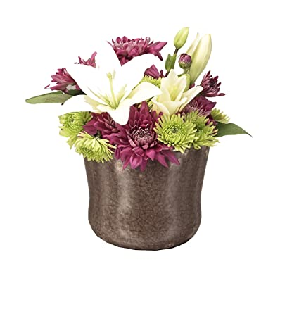 Amazon Napco Flower Vaseplanter In Joy Design 4 Inch Home