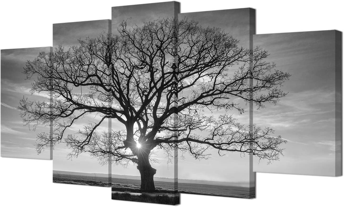 HOMEOART Tree Wall Art Canvas Prints Black and White Tree Picture Nature Landscape Canvas Prints Living Room Office Decor 5 Panels