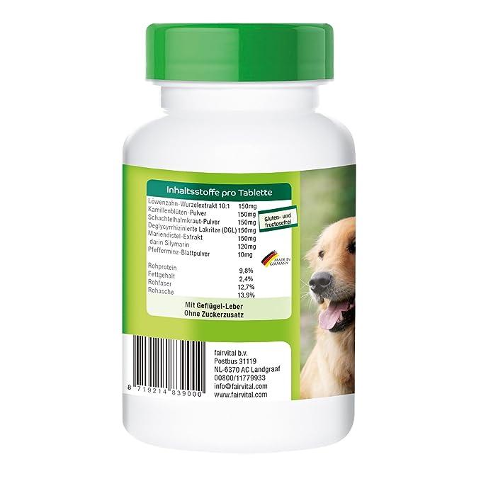 Activo intestinal - 90 pastillas para perros - Vetipur: Amazon.es: Productos para mascotas