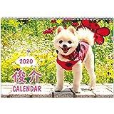 アートプリントジャパン 2020年 俊介カレンダー vol.034 1000109243