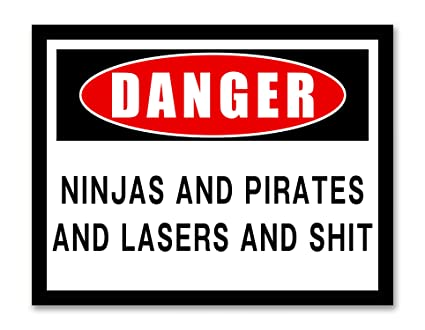 Danger Ninjas and Pirates and Lasers and SHT - Framed - Funny Signs Canvas Print Home Decor Wall Art, Black Real Wood Frame, White, 14x18