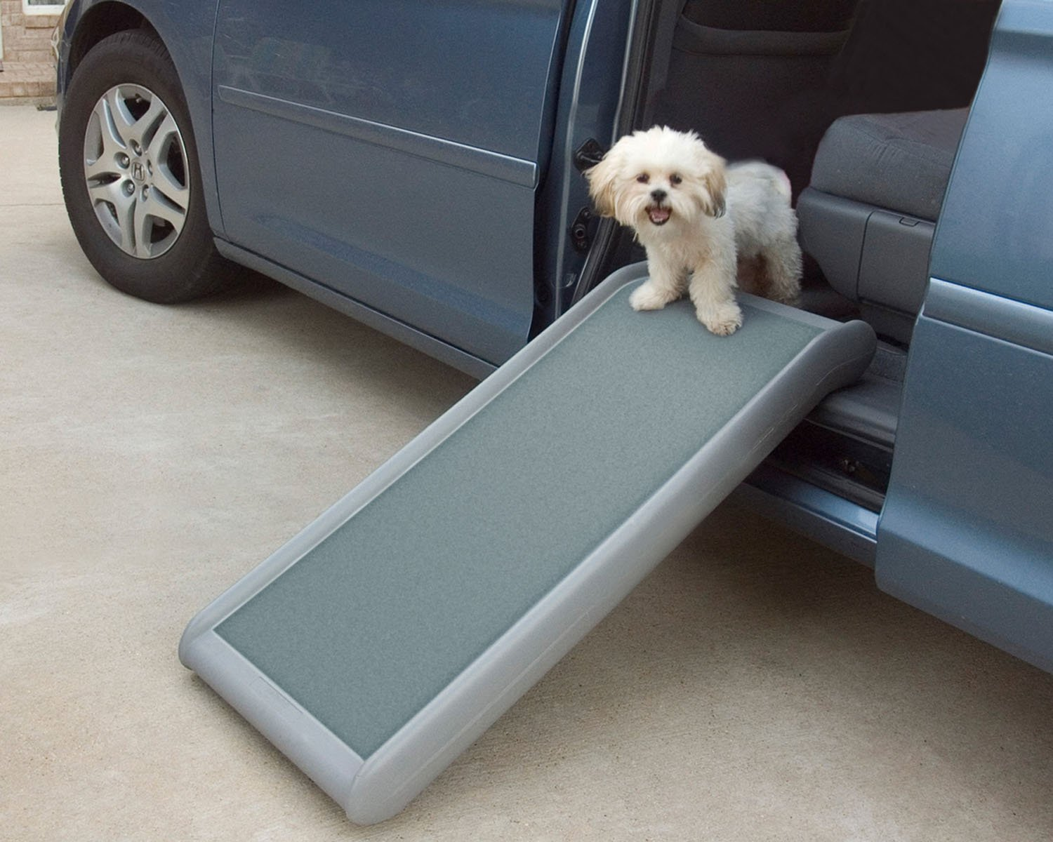 Amazon.com : PetSafe Solvit Half Ramp II, 17 In. W X 39 In. L, Portable  Lightweight Dog And Cat Ramp, Best For Shorter Inclines : Pet Door Safety  Ramps ...